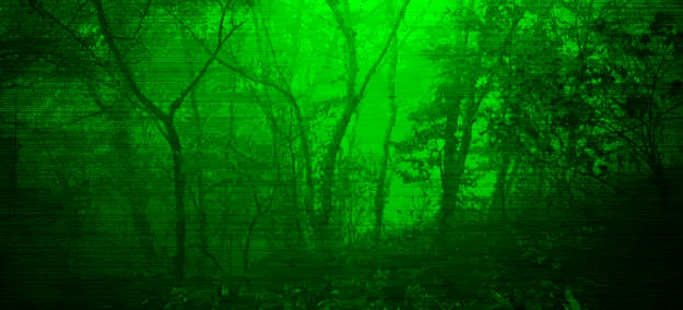 night vision view of woods